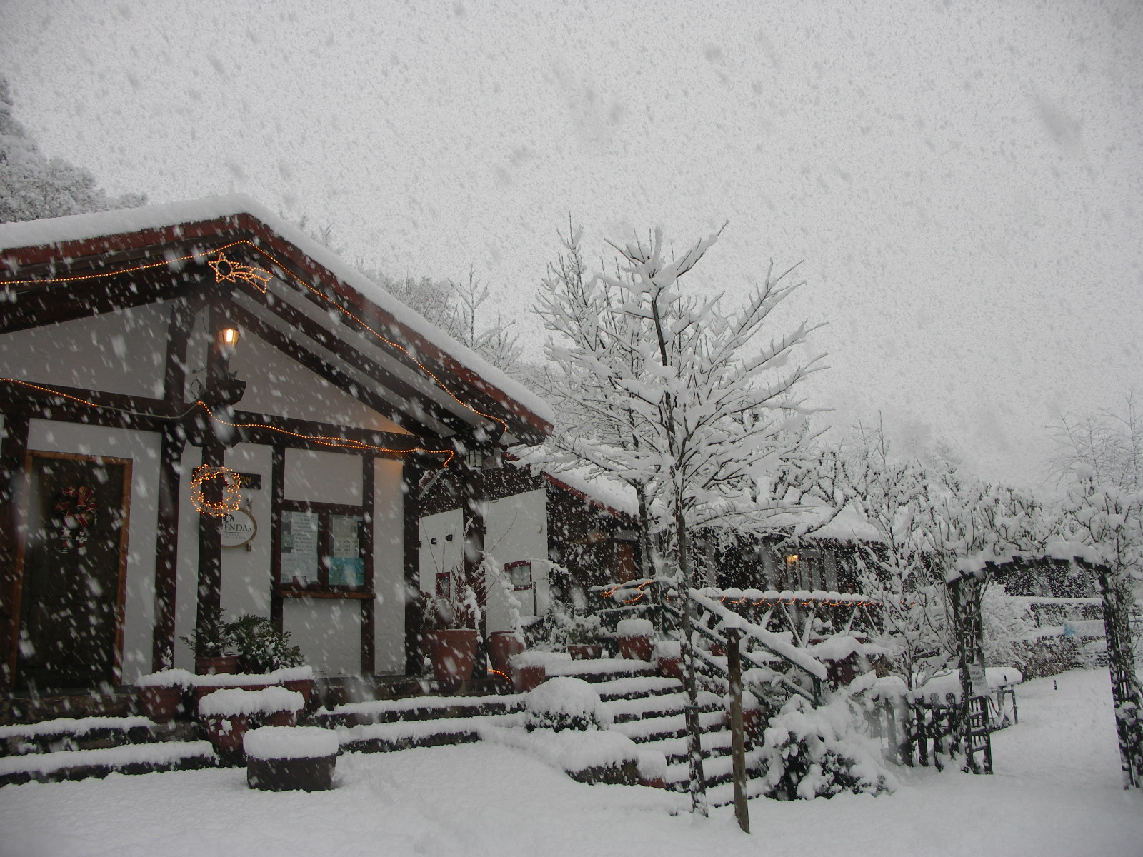 Bungalows nevando