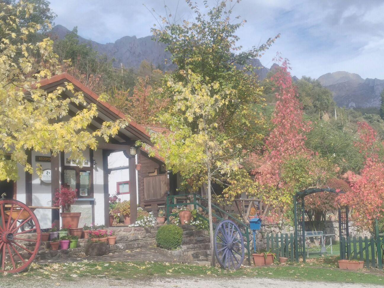 Los bungalows en ambiente otoñal